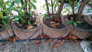Gardena Microdrip System mit Pflanzkübeln